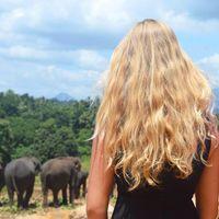 Profielfoto van Lauren Pronk